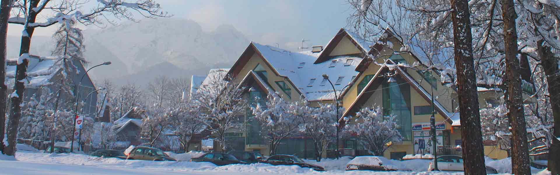 Zakopane Apartamenty I Pokoje Gościnne Jawor Noclegi Centrum